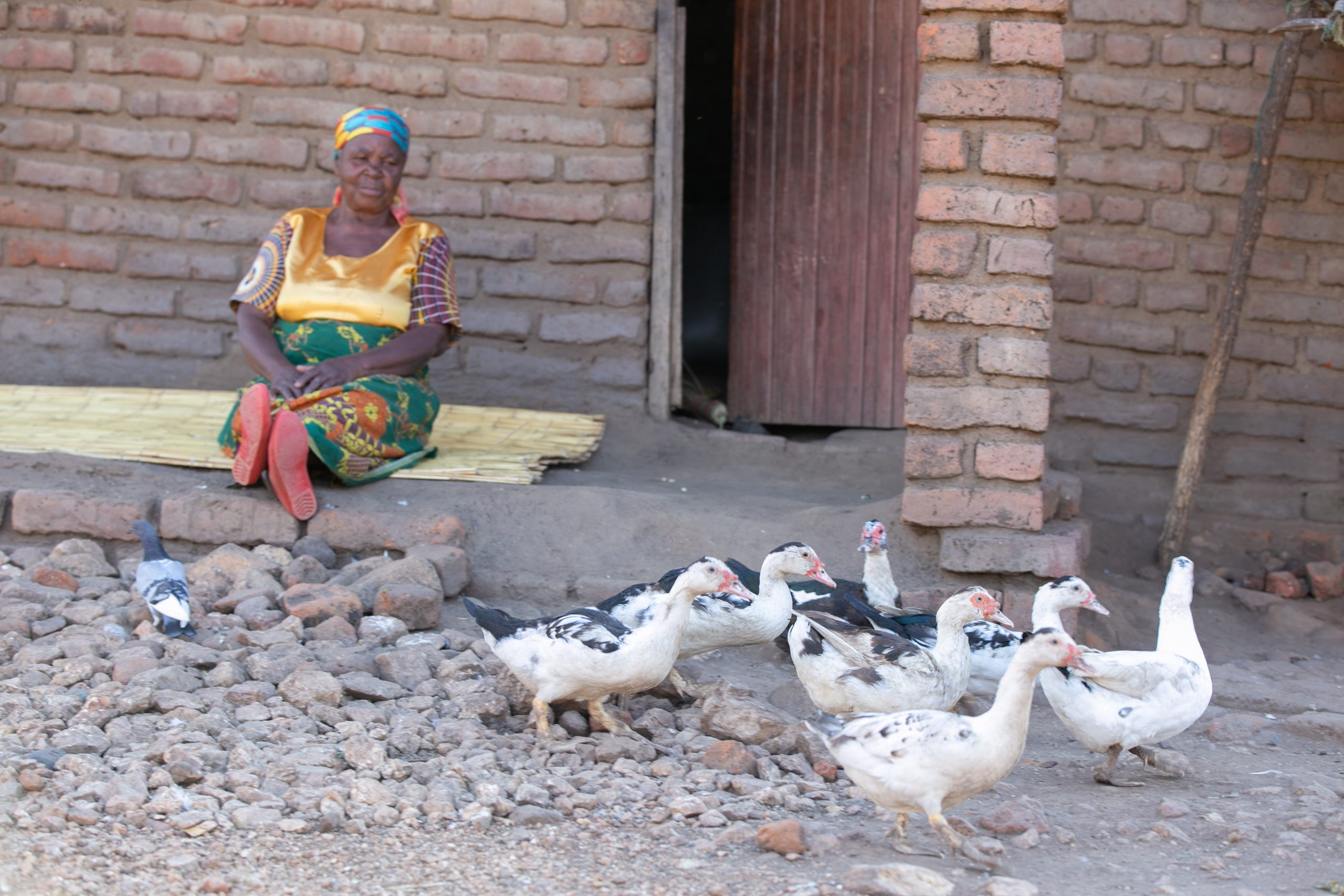210507 HelpAge, Malawi_Fairpicture_Catherine_Robert_001 -2